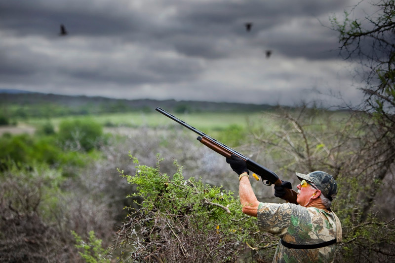 Dove Shooting Argentina