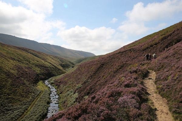 News from The Moors