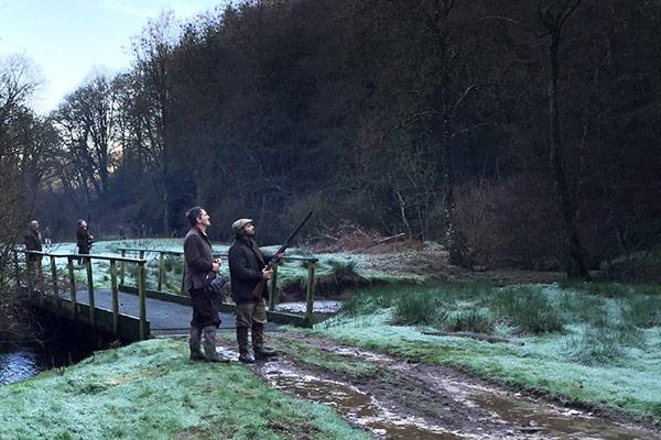 Cruwys Morchard - Driven Pheasant & Partridge Shooting