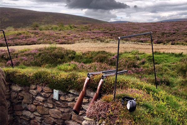 Glenogil Estate - Driven Pheasant & Partridge Shooting