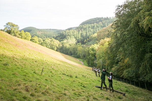 Llwyn Madoc - Driven Pheasant & Partridge Shooting