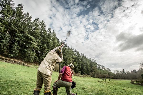 Molland Estate - Driven Pheasant & Partridge Shooting