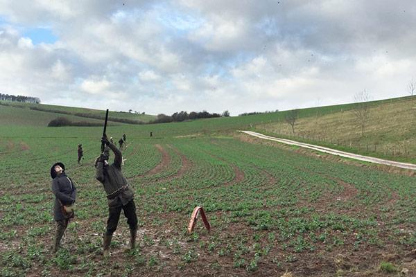 Mongewell Estate - Driven Pheasant & Partridge Shooting