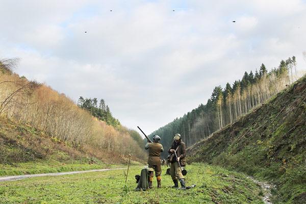 Rievaulx Estate - Driven Pheasant & Partridge Shooting