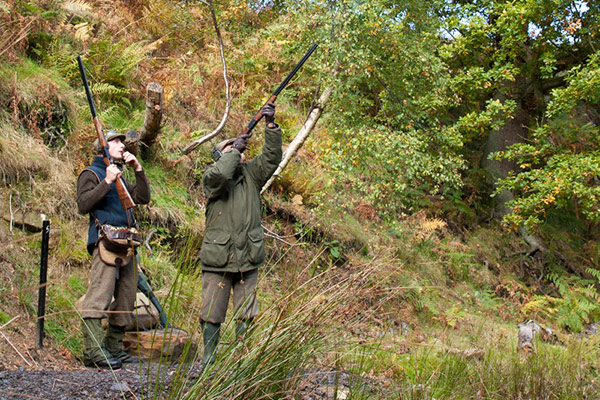 Snilesworth Estate - Driven Pheasant & Partridge Shooting