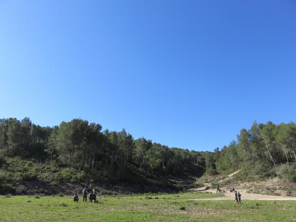 Spanish Partridge Shooting