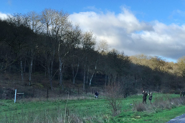 Worlaby Estate - Driven Pheasant & Partridge Shooting