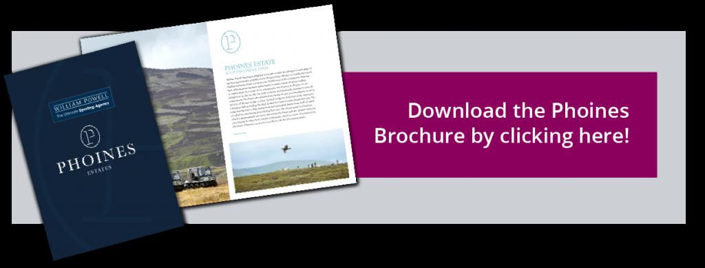 Download the Phoines Shooting Brochure